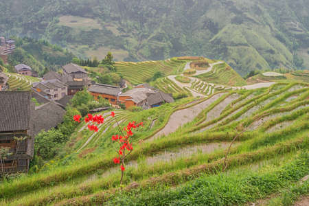 Pingancun village and rice fields in the Longsheng area near Guilin Stock fotó