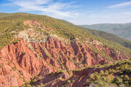 View of Tagargoust forest on National Road 9 from Marrakech to Ouarzazate 版權商用圖片