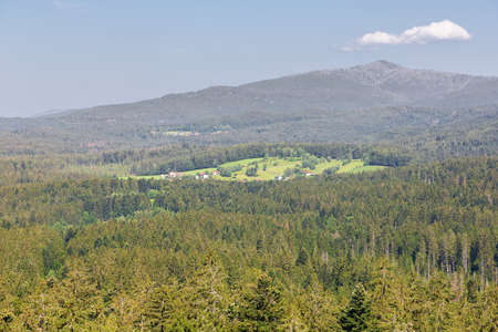 The Bavarian Forest around Neuschonau in the vicinity of the treetop walk Banco de Imagens