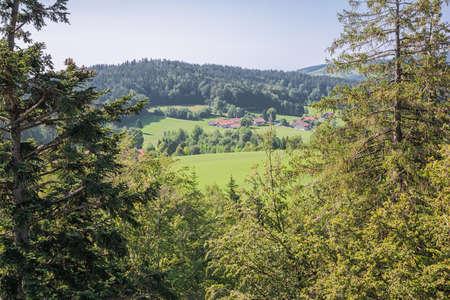 Rolling hills around Neuschonau in the vicinity of the treetop walk Banco de Imagens