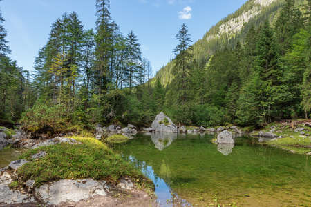 At the shore of the Gosaulacke, a pool between the two lakes in Gosau