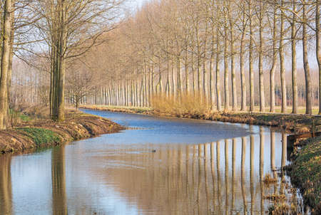 The Moervaart, a canal with bald trees seen from the Kalve bridge