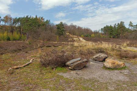 Path winding up a hill on the Mechelse Heide