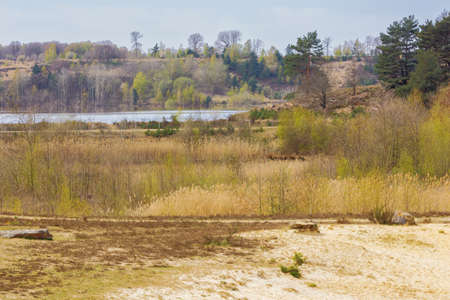 Distant fen and heather on the Mechelse Heide near the entrance of the park