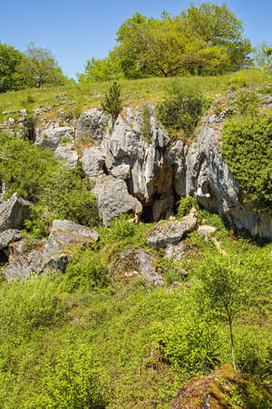 The sinkhole of the Rocher troué (fissured rock) near the Fondry des chiens in Nismes. Fondry comes from the French fonderie because iron ore from the sinkhole was melted.