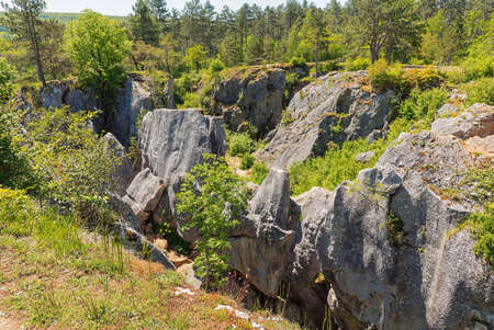 Overview of the Fondry des chiens in Nismes; Fondry comes from the French fonderie because iron ore from the sinkhole was melted.