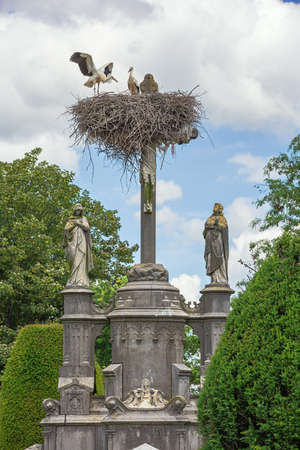 Pair of storks arranging their nest above Jesus' cross at the graveyard in Muizen