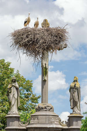 Two storks looking at the camera from their nest above Jesus' cross at the graveyard in Muizen