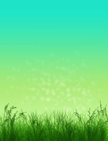 Spring background. Grass in sunlight. Natural background with bokeh. Summer. A park. Regeneration. Close-up. Nature awoke Stock Photo