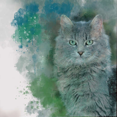Watercolor hand painted illustration of cute grey cat