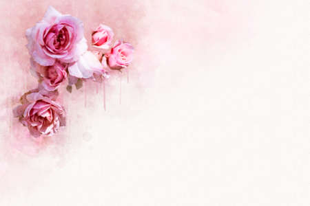 Botanical illustration of a pink rose. Perfect for greeting card or letterhead.