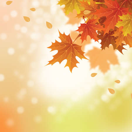 Autumn leaves banner illustration. Orange and yellow falling leaves