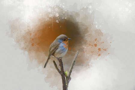 Portrait of an European Robin, watercolor painting. Animal illustration. Foto de archivo