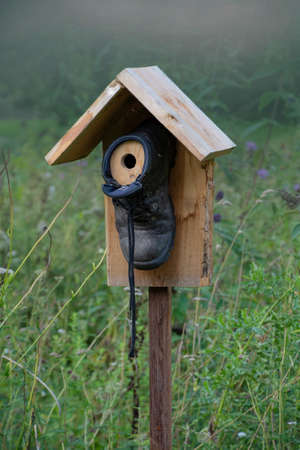 A DIY bird house, made from an old shoe and some wood. Imagens
