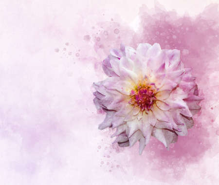 Dahlia: Watercolor style flower illustration for background, invitation card, birthday card
