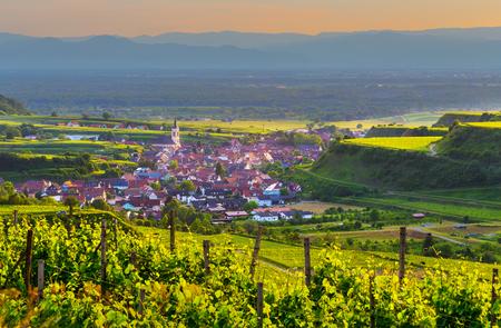 ブドウ畑と夕焼け、黒い森、ドイツの古い絵のような町 Kaiserstuhl.Travel とワイン作りの背景と美しい風光明媚な山のパノラマ。