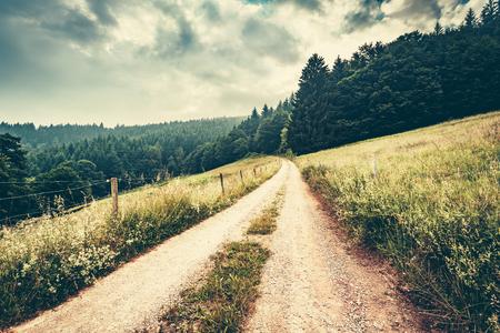 夢のような山の風景。夏の霧の森で田舎道。ドイツ、シュヴァルツヴァルト。美しい自然の風景。 写真素材