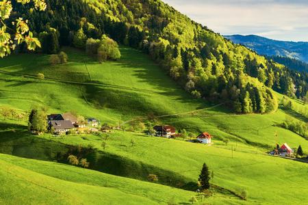 ドイツ、Muenstertal、黒い森の美しい山あいの風光明媚な田園風景。トーン、拡散します。