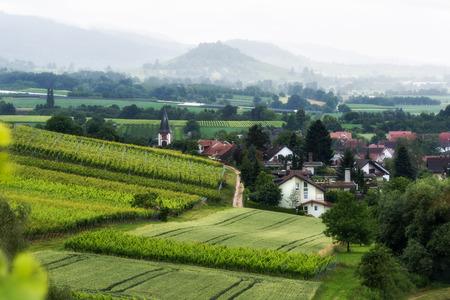 風光明媚な山ブドウ畑、ドイツの黒い森の教会と古い絵のような村の風景。旅行とワイン作りの背景。