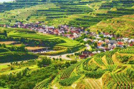 夏の日のドイツの美しい山渓谷のぶどう農園。古い歴史的な村の風光明媚な田舎風景。カラフルな旅行やバック グラウンドをハイキングします。 写真素材