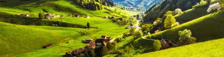 開花の木と伝統的な歴史的な村の風光明媚なパノラマ ビューの家します。ドイツの黒い森。カラフルな旅行の背景。
