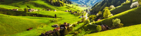 Scenic panoramic view of a historic village with blossoming trees and traditional houses. Germany, Black Forest. Colourful travel background.
