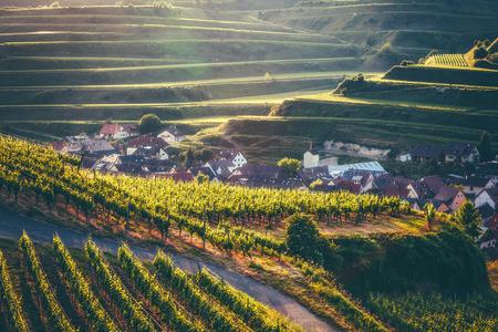 驚くほどの歴史的な村、民家テラスにブドウ畑と田園風景。Kaisersuhl、ドイツ黒い森の景色。美しい夏の旅行とワイン作りの背景。ヴィンテージの効