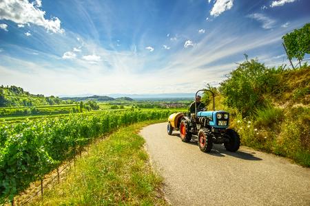 カイザーシュトゥール, ドイツ - 2016 年 7 月 30 日: 正体不明農業労働者カイザーシュトゥール、夏に黒い森の風光明媚なつる農園を通過、国の道路上