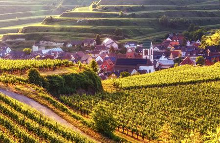 中世の村、民家テラスにブドウ畑と田園風景。夕暮れ時の Kaisersuhl、ドイツの景色。美しい旅行 b とワイン作りの背景。