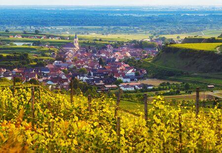 ブドウ畑と古い歴史的な村はドイツの黒い森で風光明媚な山のパノラマ風景。秋のテラスで成長のブドウ園の上を表示します。背景を旅行します。 写真素材