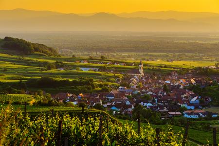 ブドウ畑と夕焼け、黒い森、カイザーシュトゥール ドイツの古い絵のような町で美しい山のパノラマ。旅行とワイン作りの背景。