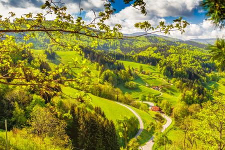 春の美しい山あいの風光明媚なパノラマ風景。美しい歴史的な村花の木と伝統的な家します。ドイツの黒い森。カラフルな旅行の背景。