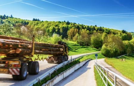 夏の田舎道とログはトラック輸送の木材です。風光明媚な林業の背景。 写真素材