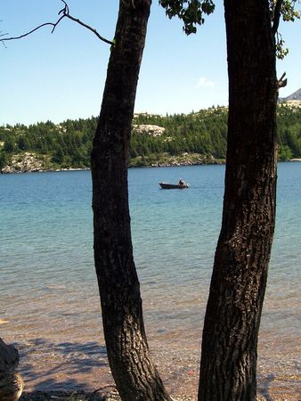a motor boat caught between two trees