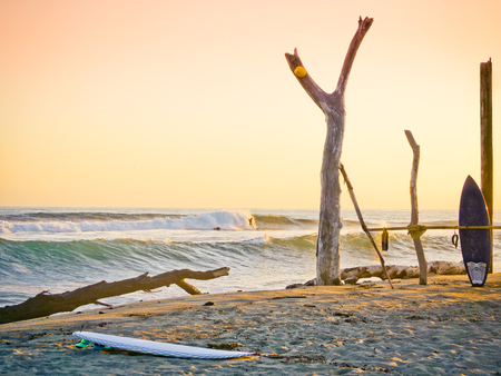 Surboards on the beach, golden hour.