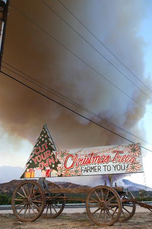 Christmas trees selling sign  during the Thomas Fire in Ventura county wildfire. A wildfire is an uncontrolled fire that is wiping out large fields and areas of land. Editorial