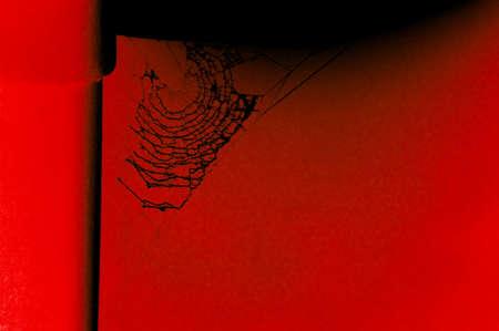 alienation: Cobweb in red