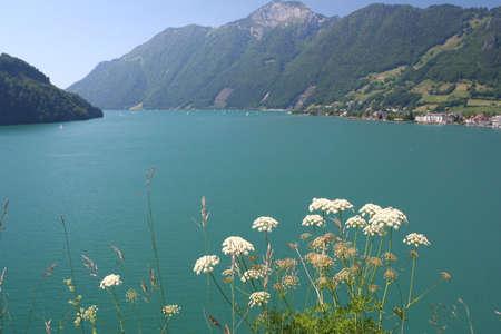 Sunny  mountain Lake #1 Stock Photo