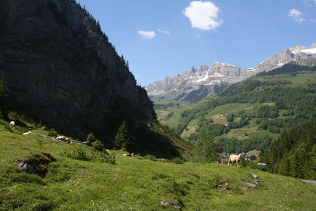 Mountain Vallay #3 photo