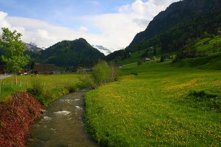 Mountain stream #3 photo