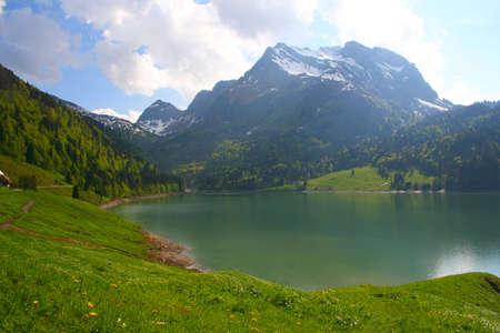 Sunny day in Alp #2