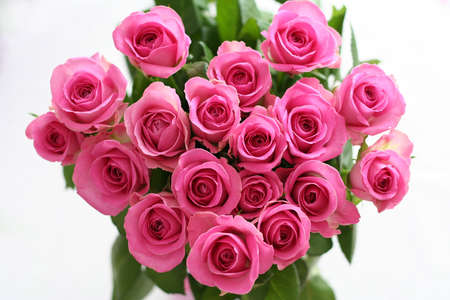 corazon rosa: Coraz�n Rosado