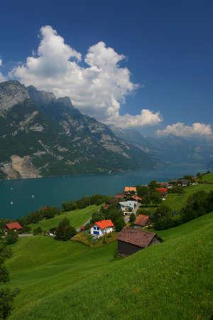 Lake sunny landscape