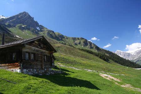 Alpine hills 3