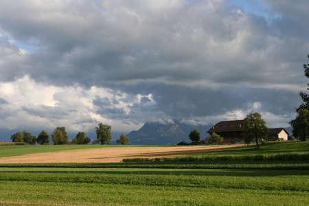 farme: Soleggiata campi