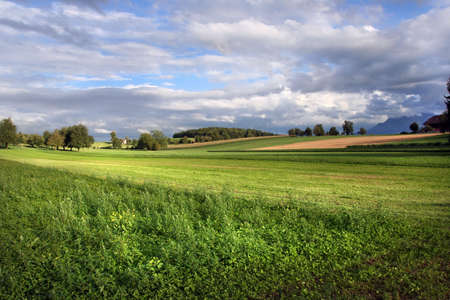 Sunny Swiss fields Stock Photo - 822875