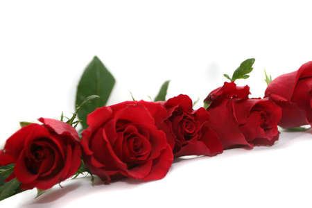 garland of deep red roses Stock Photo - 697329