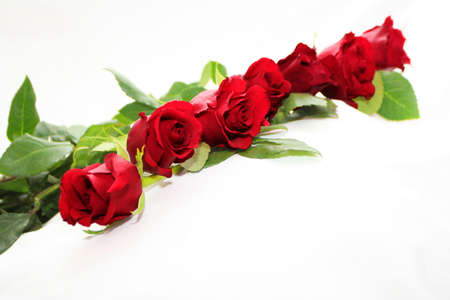 red roses garland Stock Photo - 697339