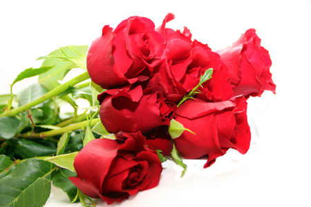 red roses bouquet Stock Photo - 697340