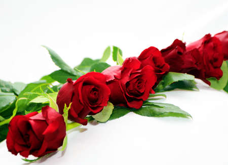 red roses garland Stock Photo - 697341